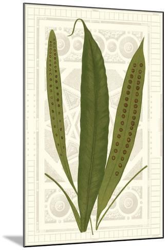 Garden Ferns VI-Vision Studio-Mounted Art Print
