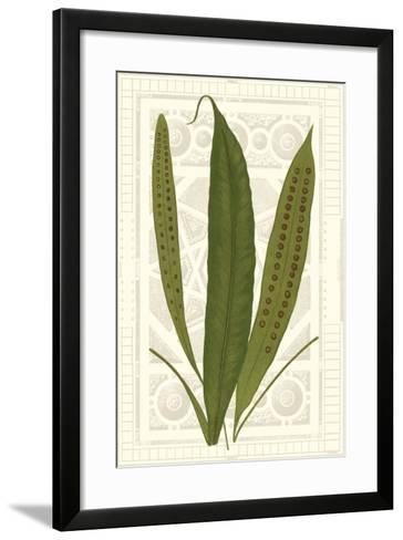 Garden Ferns VI-Vision Studio-Framed Art Print