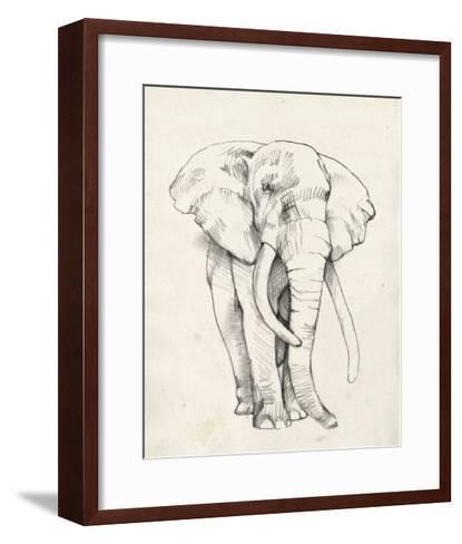 Elephant Portrait II-Jennifer Goldberger-Framed Art Print