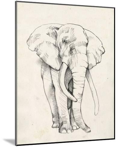 Elephant Portrait II-Jennifer Goldberger-Mounted Art Print