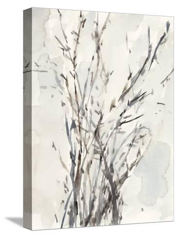 Watercolor Branches I-Samuel Dixon-Stretched Canvas Print