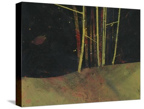 Into the Dark Wood-Paul Bailey-Stretched Canvas Print