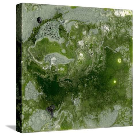 Pangaea I-Alicia Ludwig-Stretched Canvas Print