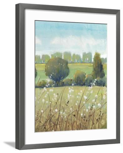Summer Breeze II-Tim OToole-Framed Art Print