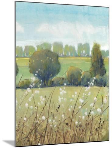 Summer Breeze II-Tim OToole-Mounted Art Print