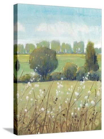 Summer Breeze II-Tim OToole-Stretched Canvas Print
