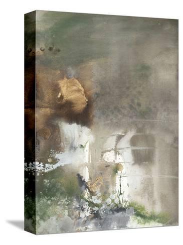 Canyon Seasons II-Joyce Combs-Stretched Canvas Print
