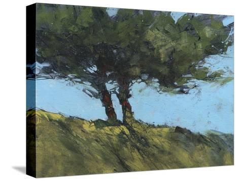 Hawthorne Duo-Paul Bailey-Stretched Canvas Print