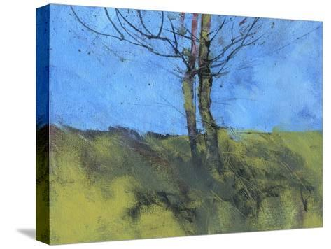 Heathland Tree Study-Paul Bailey-Stretched Canvas Print