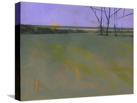 Millfields-Paul Bailey-Stretched Canvas Print