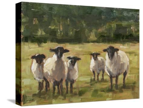 Sheep Family I-Ethan Harper-Stretched Canvas Print