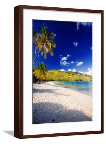 Sunny Morning in Magens Bay-George Oze-Framed Art Print