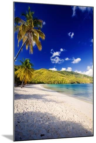 Sunny Morning in Magens Bay-George Oze-Mounted Photographic Print