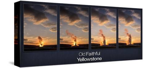 Old Faithful Geyser-Steve Gadomski-Stretched Canvas Print