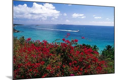 Frenchmans Bay Panorama St Thomas USVI-George Oze-Mounted Photographic Print