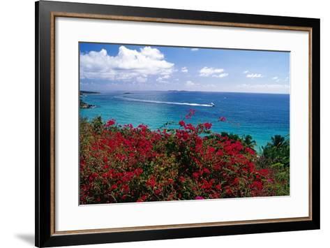 Frenchmans Bay Panorama St Thomas USVI-George Oze-Framed Art Print