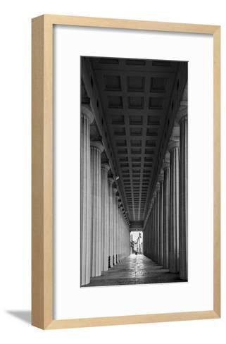 Soldier Field Colonnade Chicago BW-Steve Gadomski-Framed Art Print