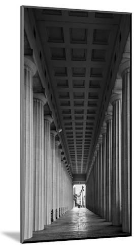 Soldier Field Colonnade Chicago BW-Steve Gadomski-Mounted Photographic Print