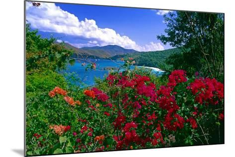 Colorful Caribbean View, St John, Virgin Islands-George Oze-Mounted Photographic Print