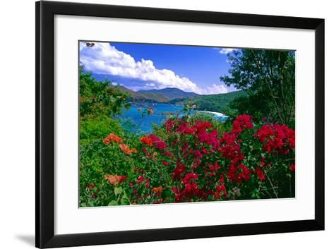 Colorful Caribbean View, St John, Virgin Islands-George Oze-Framed Art Print