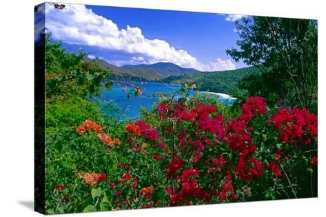 Colorful Caribbean View, St John, Virgin Islands-George Oze-Stretched Canvas Print
