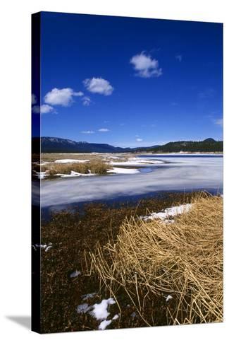 Mogollon National Park winter landscape-Charles Bowman-Stretched Canvas Print