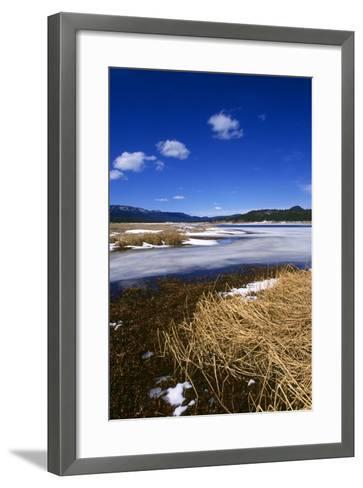 Mogollon National Park winter landscape-Charles Bowman-Framed Art Print