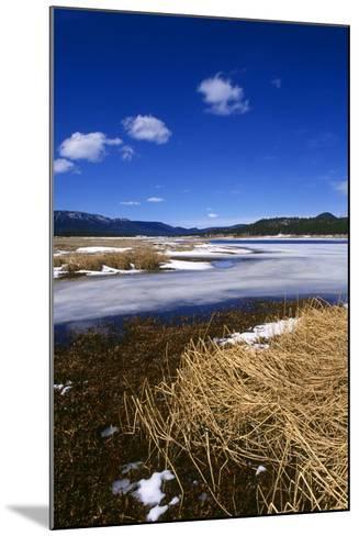 Mogollon National Park winter landscape-Charles Bowman-Mounted Photographic Print