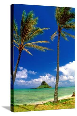 Chinamens Hat in Kaneohe Bay, Hawaii-George Oze-Stretched Canvas Print