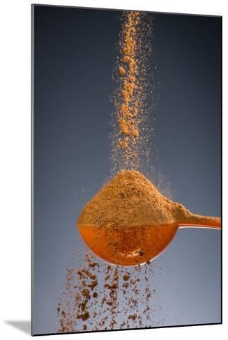 1 Tablespoon Cinnamon-Steve Gadomski-Mounted Photographic Print