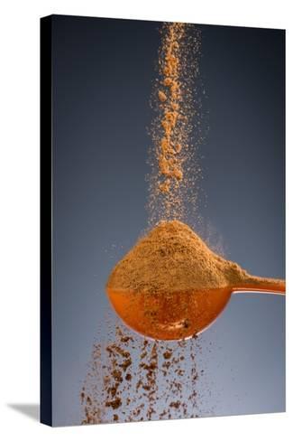 1 Tablespoon Cinnamon-Steve Gadomski-Stretched Canvas Print
