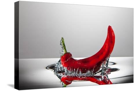Red Pepper FreshSplash-Steve Gadomski-Stretched Canvas Print