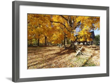 Farm Road Autumn Scenic, New Jersey-George Oze-Framed Art Print