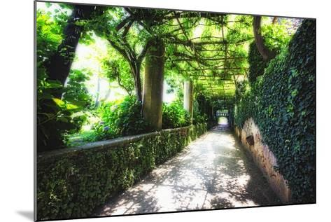 Arbor Path, Ravello, Italy-George Oze-Mounted Photographic Print