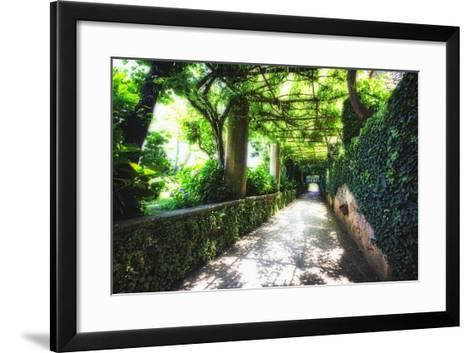 Arbor Path, Ravello, Italy-George Oze-Framed Art Print