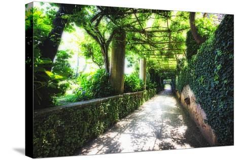 Arbor Path, Ravello, Italy-George Oze-Stretched Canvas Print