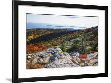 Best View from the Cadillac Mountain-George Oze-Framed Art Print