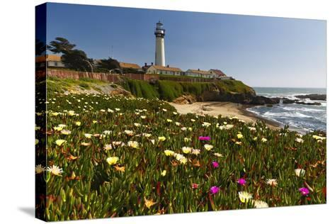 Pigeon Point Spring Vista, California-George Oze-Stretched Canvas Print
