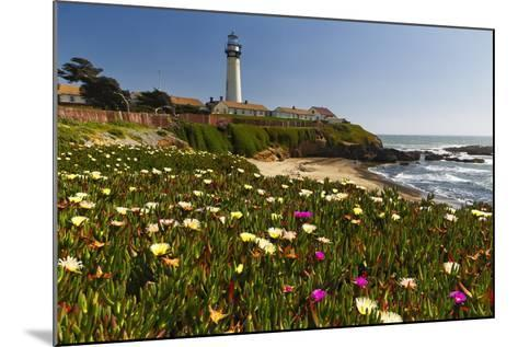 Pigeon Point Spring Vista, California-George Oze-Mounted Photographic Print