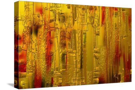 Visual 1-Rabi Khan-Stretched Canvas Print