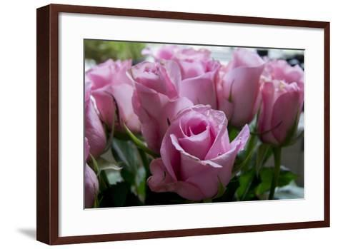 Roses Pink-Charles Bowman-Framed Art Print