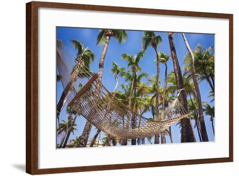 Hammock in a Palm Grove, Puerto Rico-George Oze-Framed Art Print