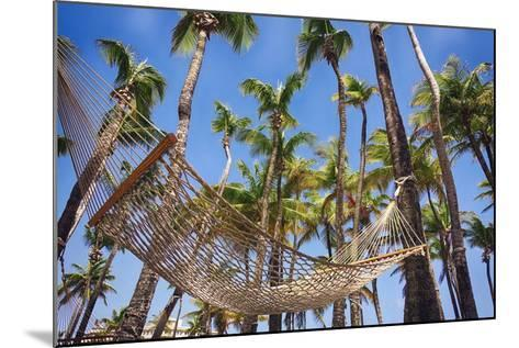 Hammock in a Palm Grove, Puerto Rico-George Oze-Mounted Photographic Print