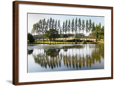 Line Of Trees Reflected-Charles Bowman-Framed Art Print