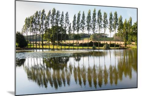 Line Of Trees Reflected-Charles Bowman-Mounted Photographic Print