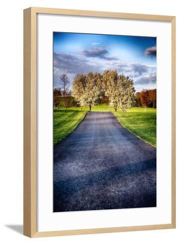 Country Road With Blooming Trees, New Jersey-George Oze-Framed Art Print