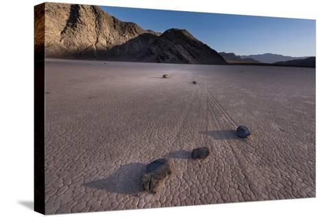 Rocks on the Racetrack Death Valley-Steve Gadomski-Stretched Canvas Print