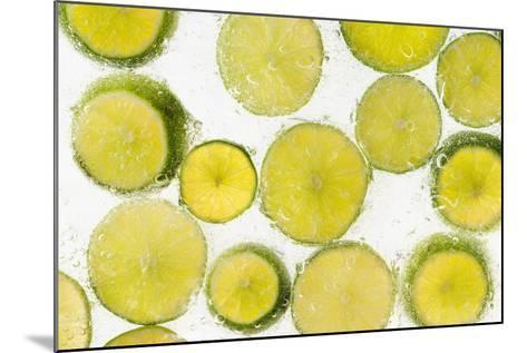Lime Fresh-Steve Gadomski-Mounted Photographic Print
