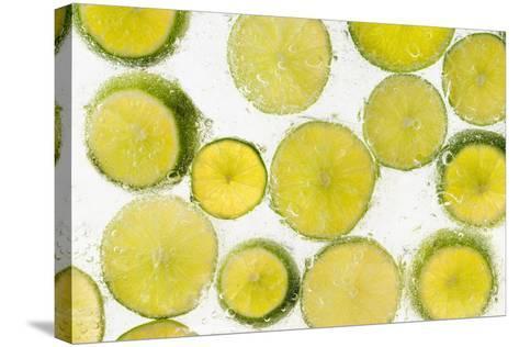 Lime Fresh-Steve Gadomski-Stretched Canvas Print