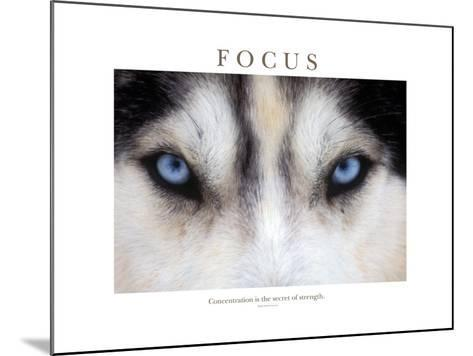 Focus - Concentration Is The Secret Of Strength-Brian Horisk-Mounted Photographic Print